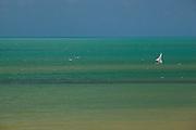 Canoa Quebrada_CE, Brasil...Praia de Canoa Quebrada, no Ceara...Canoa Quebrada beach, Ceara. ..Foto: BRUNO MAGALHAES / NITRO