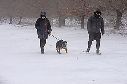 © Licensed to London News Pictures 07/02/2021.        Sevenoaks, UK. A wintery scene for this two people as they walk their dog. Freezing cold snowy weather at Knole Park in Sevenoaks, Kent. Photo credit:Grant Falvey/LNP