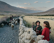 Return of the herds in the evening.<br /> The traditional life of the Wakhi people, in the Wakhan corridor, amongst the Pamir mountains.