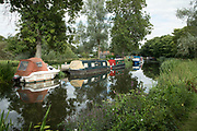 View alongside the River Chelmer with canal boats and narrowboats at Utling, England, United Kingdom.