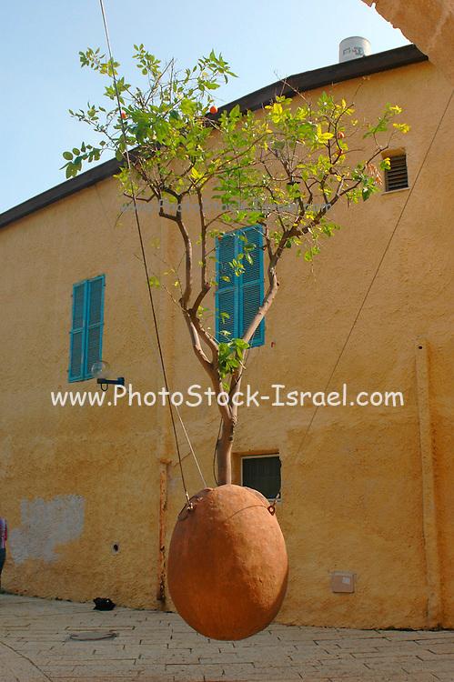Israel, Jaffa, Floating Orange Tree (1993), by Ran Morin