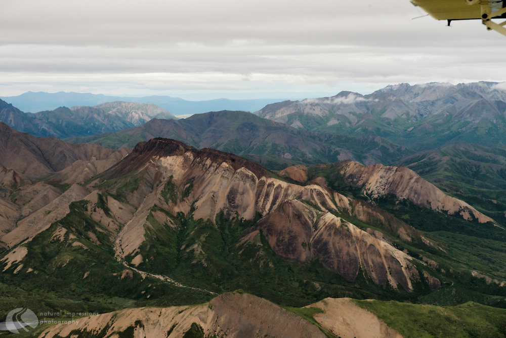Denali Flight to from Healy to the Peaks of  Mt Denali.