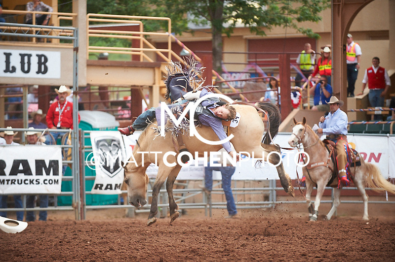 Bareback rider Tyler Scales of Severance, CO rides Jackie at the Pikes Peak or Bust Rodeo in Colorado Springs, CO.<br /> <br /> <br /> UNEDITED LOW-RES PREVIEW<br /> <br /> <br /> File shown may be an unedited low resolution version used as a proof only. All prints are 100% guaranteed for quality. Sizes 8x10+ come with a version for personal social media. I am currently not selling downloads for commercial/brand use.