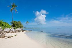 Palmenstrand der Malediveninsel Maradhoo im Addu Atoll, Palm beach of maldives Island Maradhoo, Addu Atoll, Gan, Seenu Atoll, Malediven, Lakkadiven See, Indischener Ozean, Laccadive Sea, Maldives, Indian Ocean
