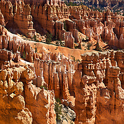 Bryce Canyon National Park in Southern Utah is distinctive due to geological structures called hoodoos, formed by wind, water and ice erosion of the river and lake bed sedimentary rocks. The red, orange and white colors of the rocks provide spectacular vistas for park visitors. This was taken from Sunset Point.