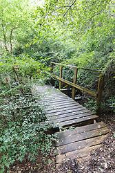 Wooden bridge along Piedmont Ridge, Great Trinity Forest, Dallas, Texas, USA