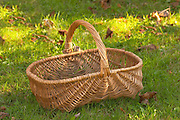 A wicker basket with dog candy, The dog is give a candy as a reward when it finds a truffle Truffiere de la Bergerie (Truffière) truffles farm Ste Foy de Longas Dordogne France