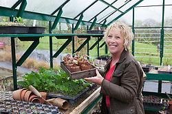 Carol Klein placing tray of Ricinus in greenhouse