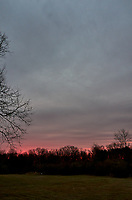 Backyard Winter Dawn Sky in New Jersey. Image taken with a Leica T camera and 11-23 mm lens (ISO 200, 18 mm, f/4.2, 1/40 sec). Raw images processed with Capture One Pro.