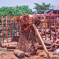 Men saw boards from a log at a lumber mill near Dhaka, Bangladesh.