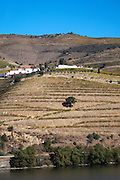 douro river and steep vineyards quinta nova douro portugal