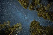 Looking up at a night sky full of stars in Jasper National Park, Alberta, Canada.