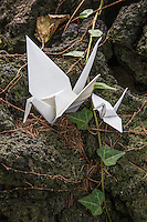 Origami Crane Mother and Baby -  Origami is the Japanese word for paper folding.  Ori means fold and gami means paper.  It is the art of paper folding that has been handed down from parent to child through the generations.  Origami normally involves the creation of paper forms by folding likenesses of animals, birds, fish, and geometric shapes. The most common are that of cranes. Even young children learn to make them.  The custom originated in Japan when gifts were decorated with nosh which had intricate folded patterns to adorn gifts.  Japanese elementary schools often have origami as part of arts and crafts classes but it is most commonly taught at home.   Traditional origami has been in practice in Japan since the Edo Period.  E sometimes cutting the paper or using nonsquare shapes to start with. The principles of origami are used in many Japanese designs, including industrial ones.