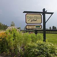 Tara Hills Stud