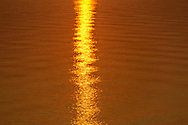 Golden Sunlight on Water, Gardiners Bay from Hedges Banks Dr, East Hamtpon, Long Island, New York