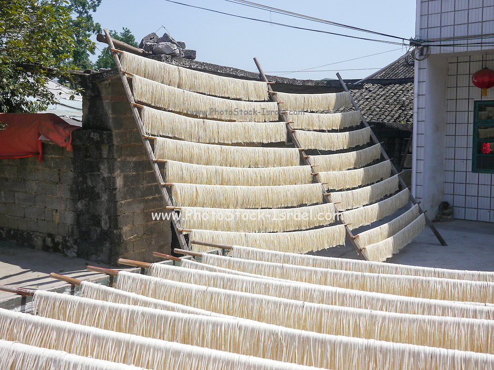 China, Yangshuo County, Noodles dry in the sun at a noodle factory
