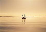 Flats fly fishing, Islamorada, Florida Keys