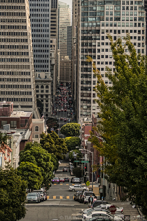 Montgomery Street from Telegraph Hill (color)