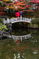 Kyu Yasuda Garden Arched Bridge - Kyu Yasuda Teien Garden  was once the grounds of a samurai and designed in 1688 by Honjo Inabanokami Munesuke.   The strolling garden was taken over and remodeled in 1894 by Zenjiro Yasuda. The Great Kanto Earthquake and also WWII seriously damaged the garden. It was renovated in 1927 after the earthquake and again in 1971.  It was given to the city of Tokyo according to Yasuda's dying wishes. Kyu Yasuda Teien has been open to the public ever since as a public park. The pond garden retains the appearance described in literature of the Meiji period and is one of the typical gardens of this period.