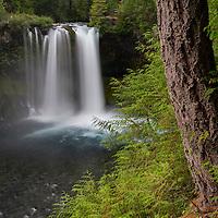 Koosah Falls