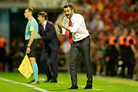 Spain's coach Julen Lopetegui (l) and Albania's coach Christian Panucci during FIFA World Cup 2018 Qualifying Round match. October 6,2017.(ALTERPHOTOS/Acero)