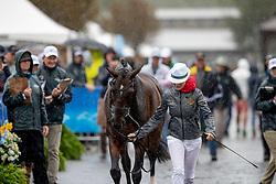 De Liedekerke-Meier Lara, BEL, Alpaga d'Arville<br /> World Equestrian Games - Tryon 2018<br /> © Hippo Foto - Dirk Caremans<br /> 16/09/2018