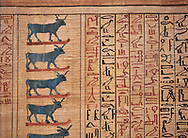 Ancient Egyptian Book of the Dead papyrus - From  tomb of Kha, Theban Tomb 8 , mid-18th dynasty (1550 to 1292 BC), Turin Egyptian Museum. .<br /> <br /> If you prefer to buy from our ALAMY PHOTO LIBRARY  Collection visit : https://www.alamy.com/portfolio/paul-williams-funkystock/ancient-egyptian-art-artefacts.html  . Type -   Turin   - into the LOWER SEARCH WITHIN GALLERY box. Refine search by adding background colour, subject etc<br /> <br /> Visit our ANCIENT WORLD PHOTO COLLECTIONS for more photos to download or buy as wall art prints https://funkystock.photoshelter.com/gallery-collection/Ancient-World-Art-Antiquities-Historic-Sites-Pictures-Images-of/C00006u26yqSkDOM