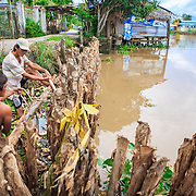 CAPTION: Mai Minh Tan and Phan Hoanh Khai build erosion barriers. After receiving construction materials and techincal training, local community members take flood prevention into their own hands, constructing several kilometres of erosion barriers along the riverside. LOCATION: An Binh Ward, Can Tho, Vietnam. INDIVIDUAL(S) PHOTOGRAPHED: Mai Minh Tan, Phan Hoanh Khai.