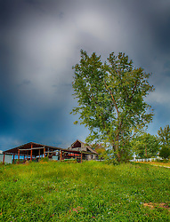 An old barn sits atop the hill next to a tall shade tree near Augusta Missouri.