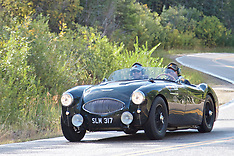 024 1955 Austin-Healey BN1