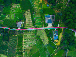 July 26, 2018 - Chengdu, Chengdu, China - Chengdu, CHINA-Aerial photography of tea plantation in Chengdu, southwest China's Sichuan Province. (Credit Image: © SIPA Asia via ZUMA Wire)