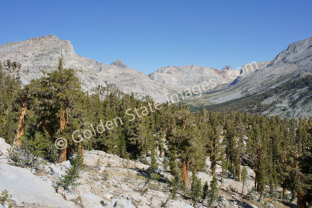 Looking northwest to Nine Lakes Basin in Sequoia's Big Arroyo. <br /> .