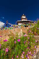 Spituk Monastery, Leh, Ladakh, Jammu and Kashmir State, India.