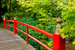 North America, United States, Washington, Renton, red bridge in Kubota Japanese Garden