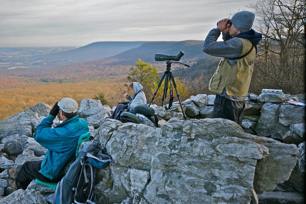 Hawk Mountain Sanctuary, Berks Co., PA
