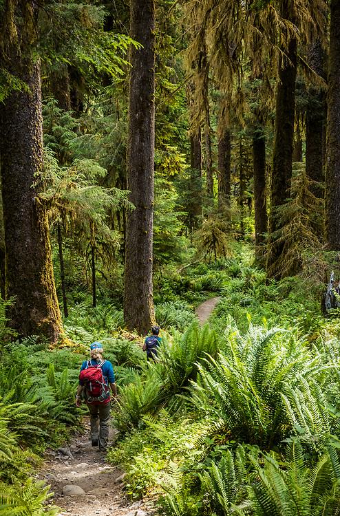 Two women hiking the Hoh River trail, Hoh Rainforest, Olympic National Park, Washington, USA.