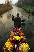 A flower vendor paddles his canoe away from Srinagar's floating market congregates where the canals that feed into Dal Lake meet. It begins before sunrise and disbands once the majority of deals have been done. Vegetables and flowers are heaped onto wooden canoes as the vendors jostle for position in the heart of the market.
