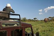 Tourist on Safari watching wild elephants in the Maasai Mara, Kenya.