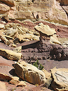 Yellow stone caps softer purple rock in Little Bell Canyon, San Rafael Reef, Utah, USA. A short drive from Goblin Valley State Park Campground is a great 9 mile loop hike up Little Wild Horse Canyon and back down Bell Canyon. The hike requires some scrambling up and down sandstone ledges, through occasional shallow water holes and fascinating narrow slots. The Navajo and Wingate sandstone of the San Rafael Reef was uplifted fifty million years ago into a striking bluff which extends from Price to Hanksville, bisected by Interstate 70 at a breach fifteen miles west of the town of Green River. The San Rafael Reef (and Swell) is one of the wildest places left in Utah.