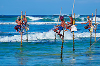 Sri Lanka, province du sud, plage de Weligama, pêcheurs sur échasses // Sri Lanka, Southern Province, South Coast beach, Weligama beach, Stilt fishermen on the coast