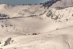 THEMENBILD - Eine Alm mitten in einem Skigebiet, aufgenommen am 05. Februar 2018, Kitzbuehel, Oesterreich // An alp in the middle of a ski area at the Hahnenkamm in Kitzbuehel, Austria on 2018/02/05. EXPA Pictures © 2018, PhotoCredit: EXPA/ Stefan Adelsberger
