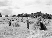 9969-2474. Shocking hay on the farm of Stanley Rogers, Route 1, Aurora, Oregon. Lee Davis, Curtis Coleman, Virgil Sharp. June 27, 1936.