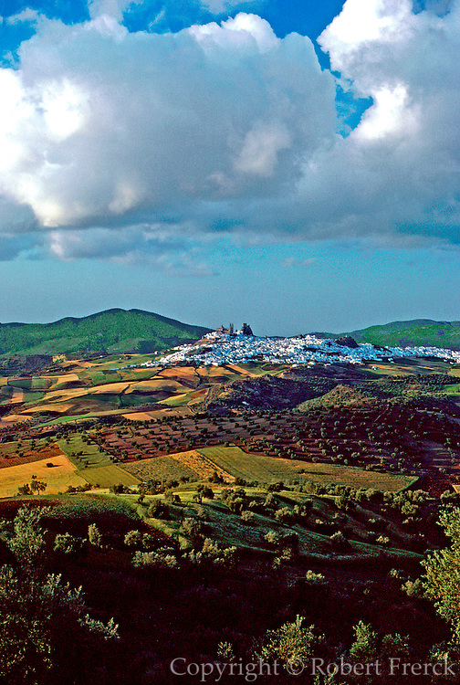 SPAIN, ANDALUSIA OLVERA; a pretty 'pueblo blanco' or white village near Ronda with olive groves and wheat fields in foreground
