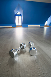 Two metal barbell still life empty room