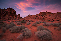 Valley of Fire State Park Scenic Landscape at Sunset, Nevada