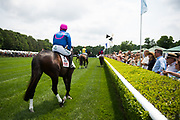 April 29, 2017, 22nd annual Queen's Cup Steeplechase. COCODIMAMA and Mark Watts