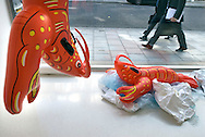 UK. London. New works by artist Jeff Koons go on show in London. Photograph shows his 'Popeye' work being hung in the Gagosian Gallery in Davies Street in Mayfair. Popeye is a body of work comprising cast aluminium sculptures based on mass-produced inflatables. Photo shows the Lobster art work hung while the plastic one it was copied off sits on the floor..