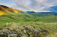 Green hills above the Imnaha River Canyon, Hells Canyon Recreation Area Oregon