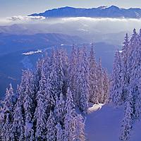 The Transylvanian Alps viewed from Poiana Brazov ski area.