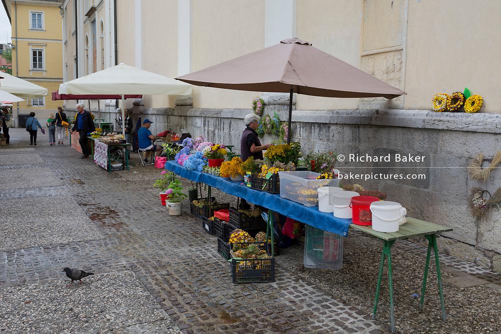 Flower stall at the small market outside St Nicholas Cathedral on Pogacarjev Square in the Slovenian capital, Ljubljana, on 28th June 2018, in Ljubljana, Slovenia.